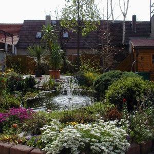 Bild Frühling am Gartenteich