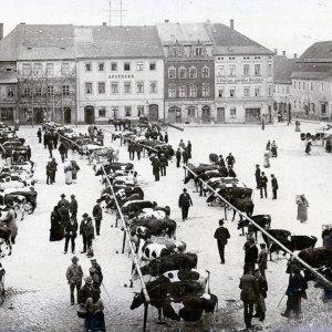 Bild Viehmarkt um 1900 direkt vor der Apotheke